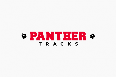 Panther Tracks